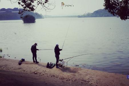 钓鲤鱼最合适的天气选择
