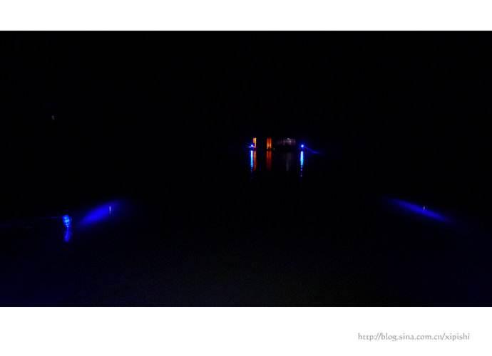 夜钓使用白光灯好还是紫光灯好