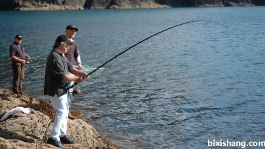 鱼塘钓草鱼的四个小窍门